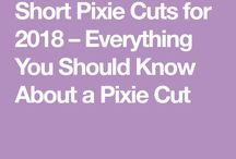 pixie hare wit