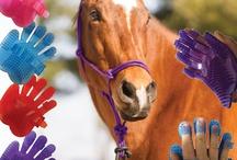 Horse accessories  / by Abbie Cavanaugh