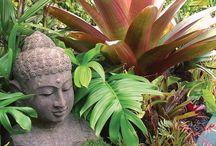 Balinese garden / Balinese garden ideas