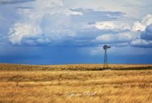 Kansas home State / by Lorene Brooks
