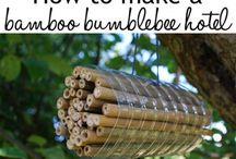 domečky pro broučky a včelky