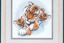 Tigermor dimesion