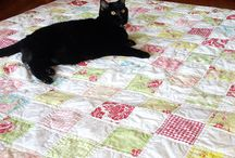 cats on quilts / by Anna Lomasney