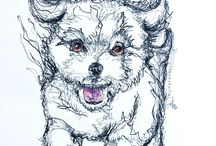 Pet Doodle / Tracey Keller, Pet Portrait extraordinaire, show off her new style!   Tracey Keller 2017 Continuous Line Ink Drawing on 300gsm Paper 42cm x 60cm