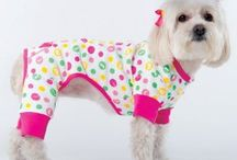 Dog Clothes / Dog Clothes can be stylish, funny and comfortable. / by Dog Supplies And Accessories