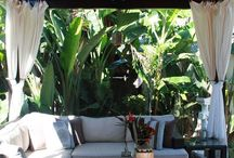 tropická záhrada
