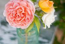 Pretty / by Katrina Burrell