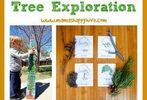 Bome/ trees