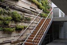 Decoración con muros verdes / Recubre tu hogar con un estilo natural y respira la tranquilidad que da un muro verde.