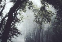 картинки природы