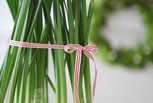 Green / Gardens DIY organics, ecofriendly thoughts