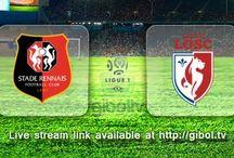 Ligue 1 / France Ligue 1 2015/2016 Live Stream Schedules