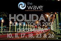 Holiday Lights Houston 2013 / 2013