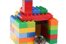 Hamster Deeb / by Ashley Deeb