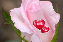 Szerelem - love