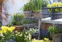 Balkoni and garden decoration