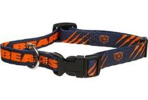 Pets can be Bears Fans Too! / Everything your pet needs to be a die-hard Bears fan! / by Chicago Bears Pro Shop