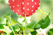 Θέμα Φράουλα