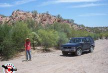 Arizona / Explore the desert and high plateaus of Arizona.
