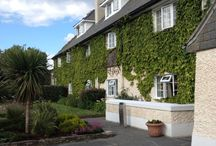 Travel Reviews / Reviews of holidays in Connemara and Renvyle, Co. Galway, Ireland.