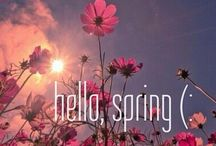 Spring Gardening / All you want to know for spring gardening!