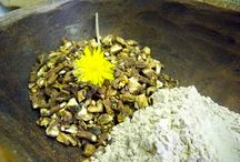 Dandelion / this board is about the herbal medicinal benefits of dandelions