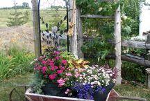 Garden / Veranda gardens