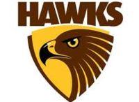 Hawthorn Hawks / hawthorn merchandise