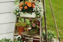 Backyard gardeninbg using