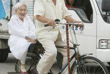 Fahrrad Transporter / Was man alles mit einem Fahrrad transportieren kann