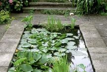 2 Garden: Water features & Fountains