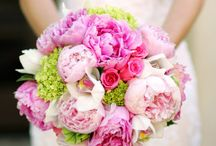 Our Wedding Flower and Color Collection / centerpieces, bouquets / by Strings & Champagne Events