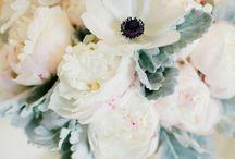 celebrate  I wedding  I  blue / by Kristine Marie