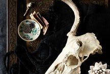 ・stills・ / by Anne Marie Hanna