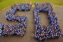 Elmar 20th celebration