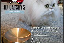 Dr. Catsby's Whisker Relief Bowl