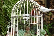 From Trash To Treasure / Perfect ways to use old or forgotten knick-knacks in your gardening adventures!
