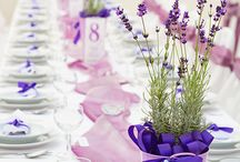 Catering Matrimoni / Servizio catering per ricevimenti di matrimonio