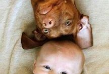 baby and fur baby