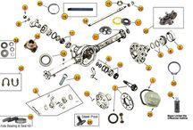 Jeep WIllys Parts Diagrams / by Morris4x4Center.com