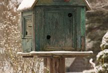 Love Birdhouses / by Deborah Bentley
