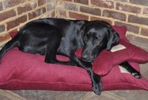 Luxury Pillow Dog Beds