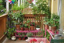 Outdoor Living / by Gloria Ulloa
