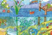 "Praxisbulletin thema ""de kleine walvis""en onderwater"