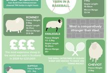 Infographics / The best and most beautiful way to visualise data