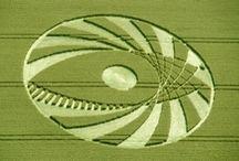 Crop Circles / by Jane Lambert