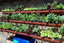 Grow Anything! / From salads to Dragon Fruit. Via Hydroponic-, Aquaponics-, Soil or Gels. For the first time, a system can help you grow anything you want in any manner you prefer.