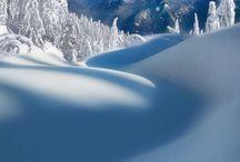 Nature Serenity & Splendor / by Sulieti Tautu'u Fonua-Angilau