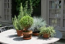 :: Gardening ::