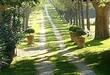 Provence chemin